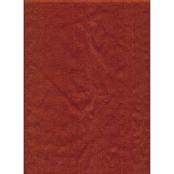 Dupion Silk Rust