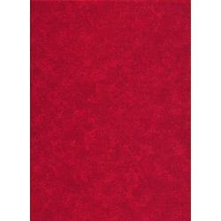 Spraytime Christmas Red