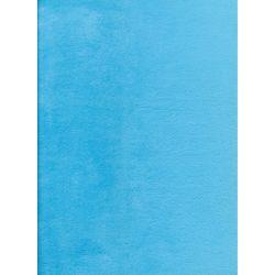 Plain Turquoise Minkie...