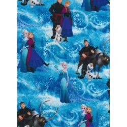 Disney Frozen Characters Scene