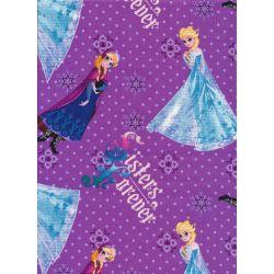 Disney Frozen Sisters Forever
