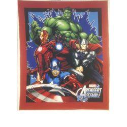 Marvel Avengers Assemble Panel