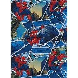 Disney Spiderman