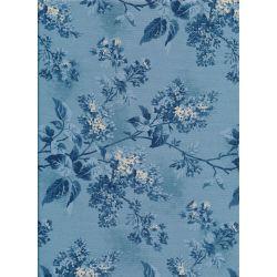 Blue Sky Blossom Trail