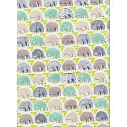 Katy Tanis Rainforest - Sloths