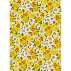 Summer Garden Daffodils  by...