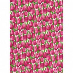 Summer Garden Pink Tulips...
